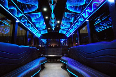 Charming 18 Passenger Party Bus Tampa Area