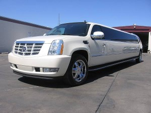 Tampa Limo Service Rental